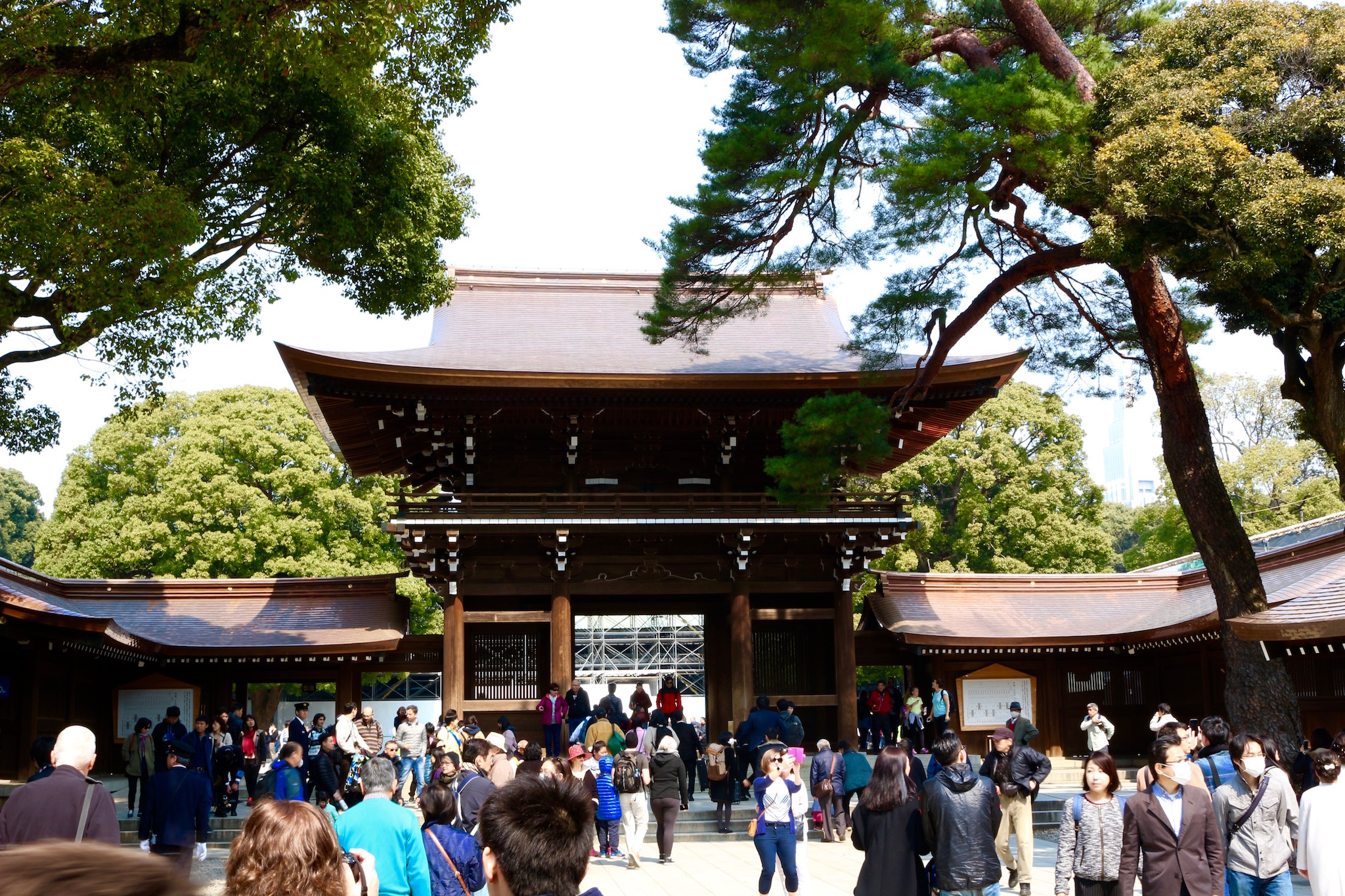 10 Best Things to do in Tokyo -- Over The Moon Vacations